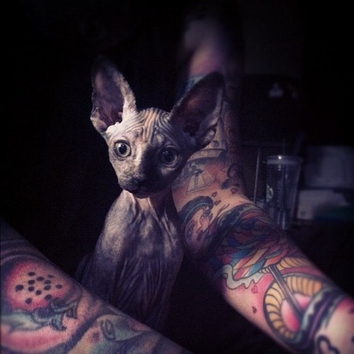 Tатуировки на руках 2012