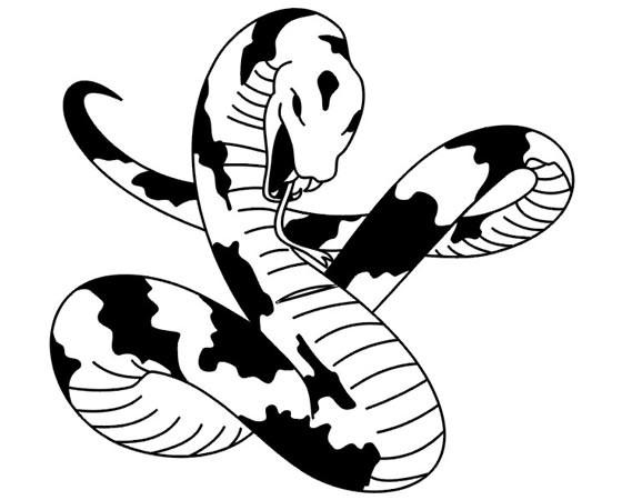 Эскизы татуировок змеи